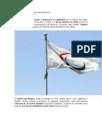A importância dos Jogos Paralímpicos.docx
