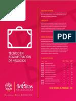 tecnico-administracion-negocios.pdf