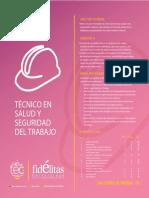 tecnico-salud-seguridad-trabajo.pdf