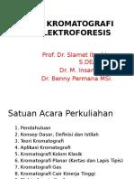 Kromatografi Dan Elektroforesis