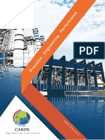 Carpe Company Brochure.pdf