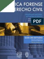 Guia Practica Forense Derecho Civil