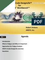 ANSYS NCode DesignLife - Usergroups 2011 RAD