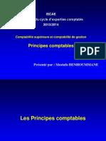 Les Principes Comptables CEC