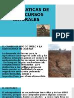PROBLEMATICAS DE LOS RECURSOS NATURALES.pptx
