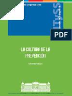 La Cultura de La Prevencion