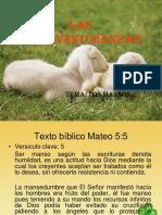 Bienaventurados los mansos..pdf