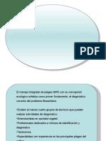 Clase Diagnostico y Muestreo de Insectos MIF