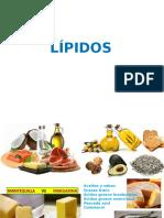 Bio2 007 LÍPIDOS