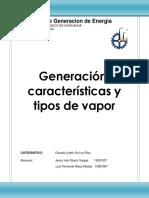SGE Generacion y Tipos de Vapor Ivan Saenz Fernando Meza