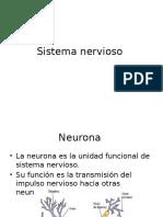 Anatomo Clase 8 NERVIOSO