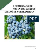 Arándano.pdf