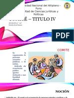 Comité- Derecho de las Personas - Personas Juridicas
