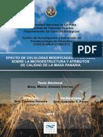 tesis doctoral miga del pan.pdf