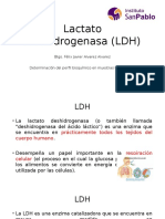 Lactato Deshigronesada (LDH)