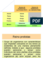 REINOS++PROTISTAS+Y+HONGOS.ppt