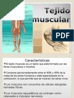 Tejido muscular resumido (equipo dulce).ppt