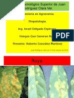 Expo Fitopatologia