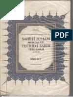 Buhari Tecridi Sarih 2