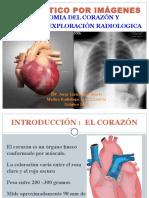 1ra Clase ANATOMIA DEL CORAZON.ppt
