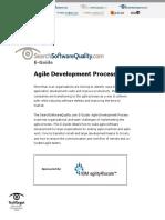 IBM SSoftwareQuality SO#033845 E-Guide 032411