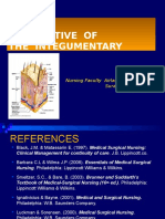 Persfective of the Integumentary System