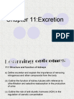 Chapter 11 Excretion - Edited)2
