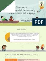 Discapacidad intelectual y lenguaje