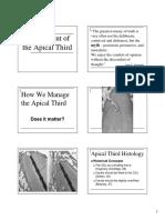 Apical Third