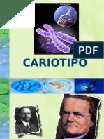 CARIOTIPO - GRUPOS SANGUINEOS