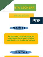 Planta Lechera
