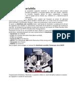Distributie Variabila Motor