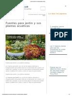 Fuentes Para Jardín y Sus Plantas Acuáticas _ Plantas