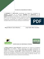 Certificado de Asistencia Tecnica
