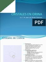 Cristales en Orina II