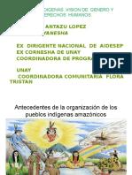 Ppt Pueblos Indigenas