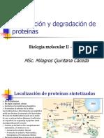 Localización y Degradación de Proteínas