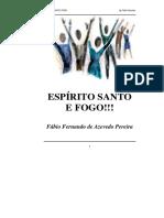 Espírito Santo e Fogo!!! - Fábio Fernando de Azevedo Pereira