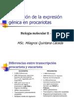 2. Regulacion Genica en Procariotas