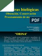 Mtras Biologicas