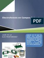 Electroforesis en Campos Pulsantes