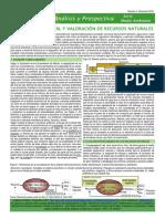 Análisis_y_Prospectiva__Serie_Medio_Ambiente_Nº4_Diciembre_2010_tcm7-161583.pdf