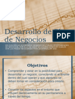 Desarrollo Del Plan de Negocios Presentacion