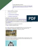 Especies en Peligro de Extinción en Perú