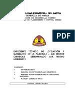 93766970 Memoria Nuevo Horizonte (1)