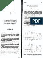 Anato Dentaire2an Anatomie Descriptive Des Dents-humaines