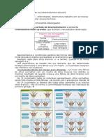 materialgenetico.doc