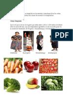 Tipos de Clima Productos y Trajes Tipicos de La Regio