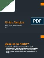 78493389-Rinitis-Alergica.pptx