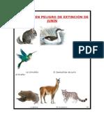 Animales en Peligro de Extinción en Junin SIERRA